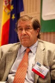 Valentino Ruiz, Presidente Protermosolar