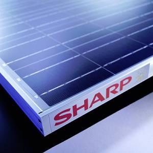 Panel solar Sharp
