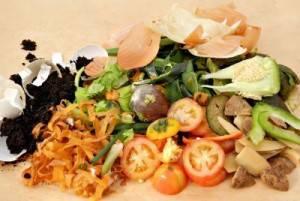 peladuras vegetales - bioplasticos - efimarket