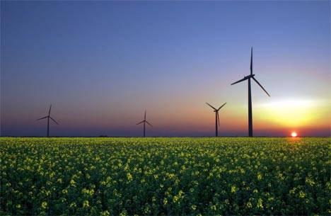 Año 2050: el 95% de la energía provendrá de fuentes renovables