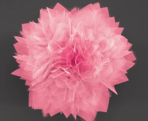 Nano-flores semiconductoras en el desarrollo de las futuras generaciones de baterías y células solares