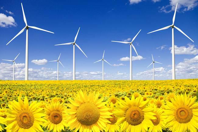 Las renovables baten otro récord pese a las zancadillas del Gobierno