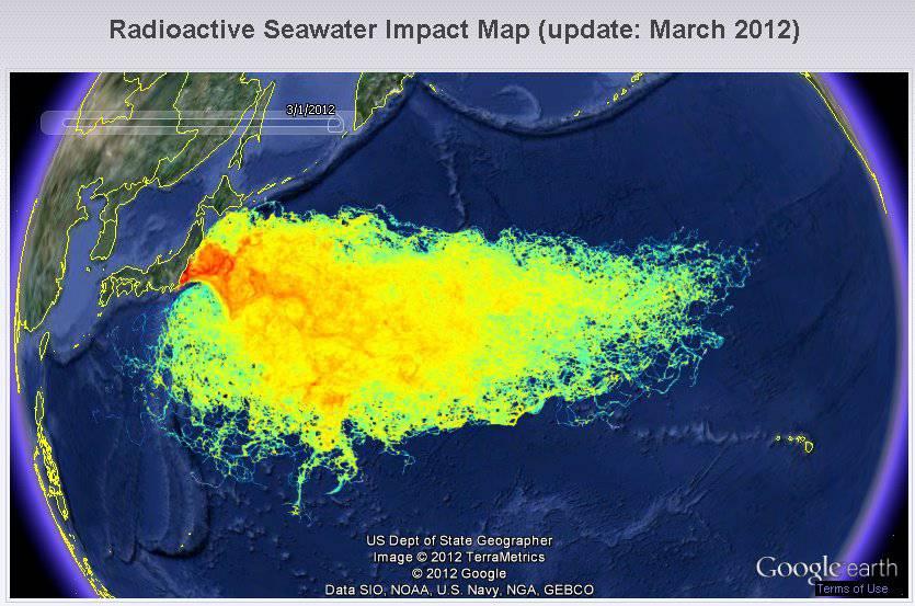 fukushima - efimarket