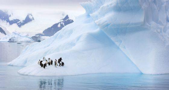 La fusión de los glaciares de Antártida por el cambio climatico es irreversible