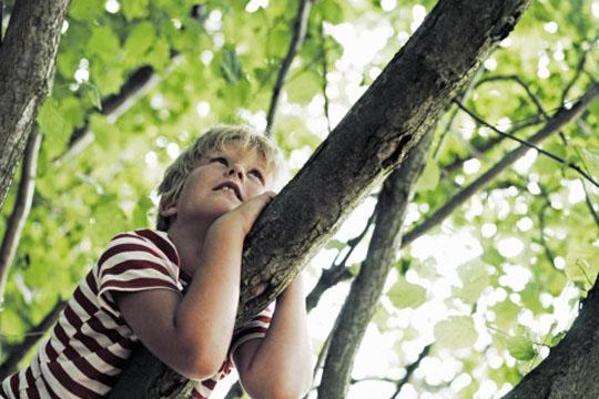 como-enseñar-a-los-niños-a-cuidar-el-medio-ambiente